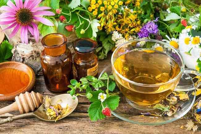 Obat Herbal Tradisional Dapat Membuat Tubuh Kebal Penyakit